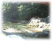2002080803.jpg