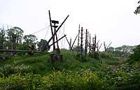 20040529_195718_riemagu_eos.jpg