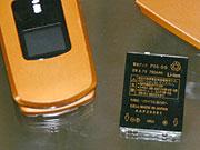 20060109_000001_riemagu.jpg