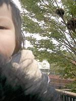 20071117_113142_riemagu.jpg