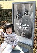 20080326_111024_riemagu.jpg