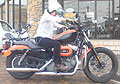 20080609_165332_riemagu.jpg