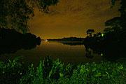 Night Safariで一番美しい風景