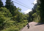 県道353号