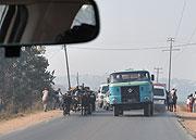 牛とトラック
