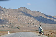 道と自転車