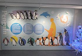 ペンギン大集合