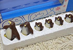 ペンギンの行進