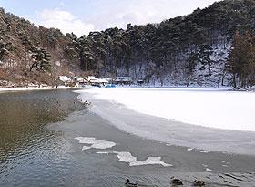 凍る臥竜公園の池