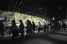 京の川ゾーン