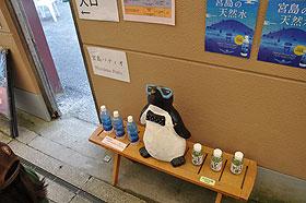 宮島パティオのペンギンキャッチ